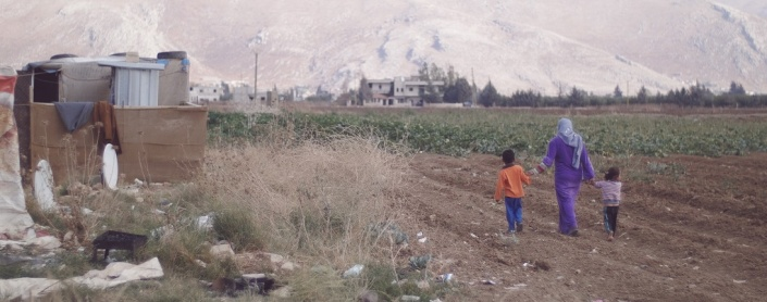 Photograph: John Bowen  Location: Bekaa Valley, Lebanon